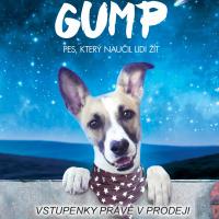 Gump: Pes, který naučil lidi žít 1